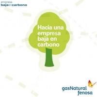 Towards low carbon company